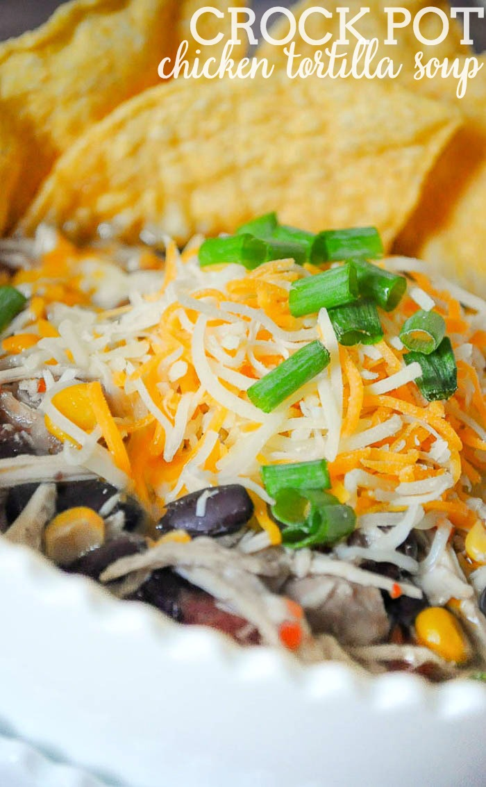 Crock Pot Chicken Tortilla Soup - Our favorite soup recipe and one of our most popular posts! Easy dinner idea - toss in slow cooker and forget about it! |The Love Nerds