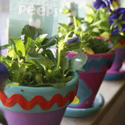 "Neighborly Love: ""You are one of my Favorite Peeps"" Flower Pots"