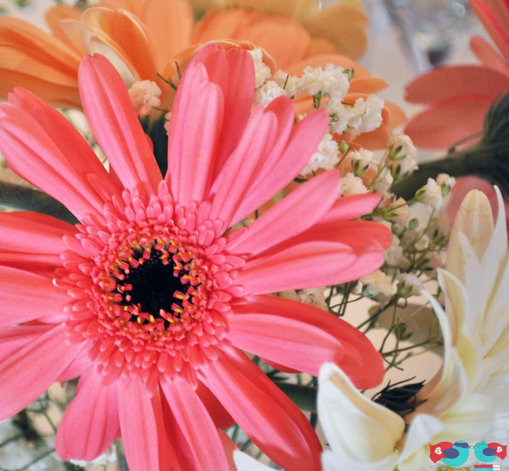 DIY Pinwheel Lunch Reception with Daisy Centerpieces