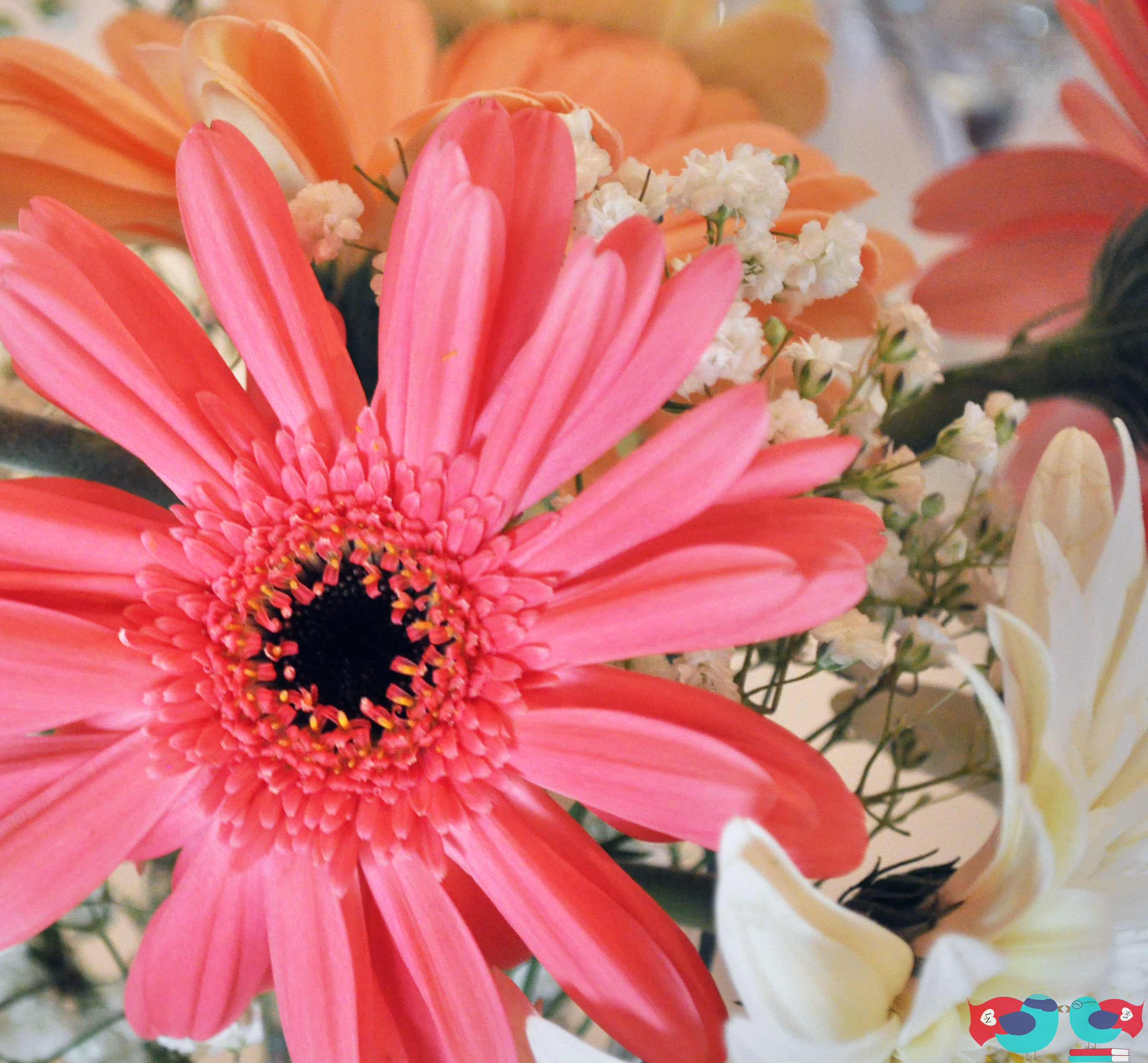 Diy Daisy Centerpieces At Lunch Reception Using Wholesale Flowers