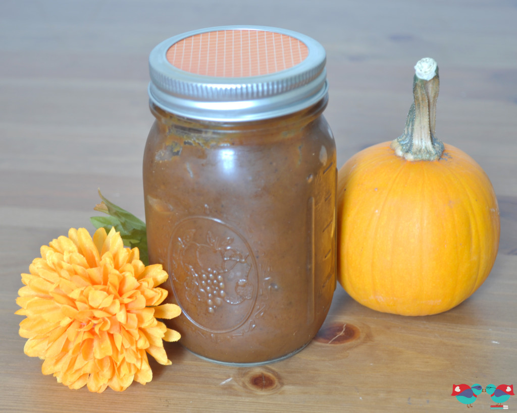 Learn how to make Pumpkin Butter in your Crock Pot! It has the perfect blend of fall spices! From The Love Nerds {http://blog.thelovenerds.com}