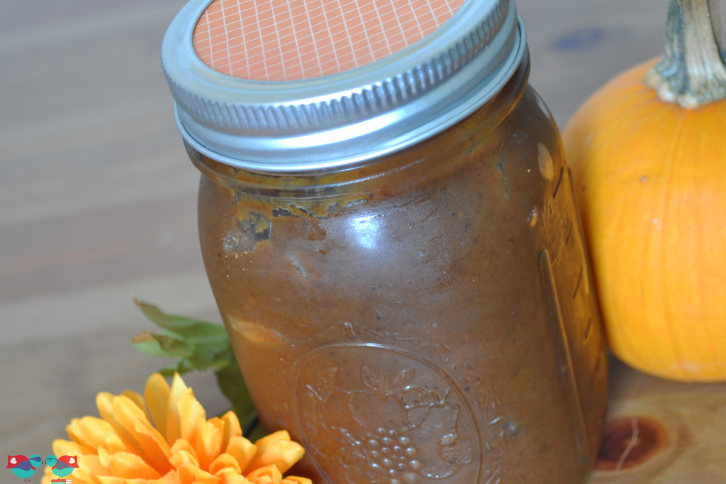 Learn how to make Pumpkin Butter in your Crock Pot! It has the perfect blend of fall spices! From The Love Nerds {http://thelovenerds.com}