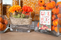 Budget Friendly Fall Decor Ideas