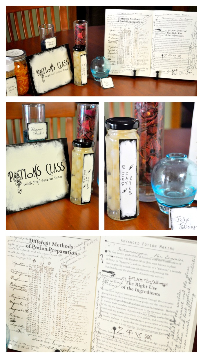 DIY Harry Potter Party - All details were created and implemented in 4 days, including this Potions display! This is fun AND doable! {The Love Nerds}