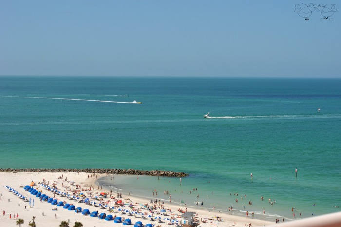 Clearwater Beach with aqua blue green waters outside Hyatt Regency Clearwater Beach Resort and Spa