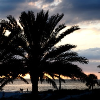 7 Tips for Visiting Clearwater Beach, Florida