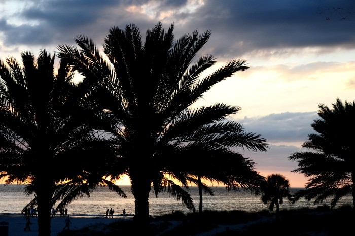 7 Tips for Visiting the gorgeous Clearwater Beach, Florida - Sun, white, sandy beaches, fabulous views, good food and fun activities. It doesn't get much better!   The Love Nerds Travel