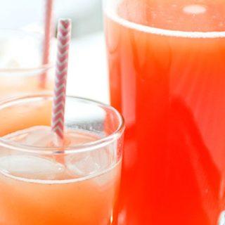 Tropical Fruit Spritzers