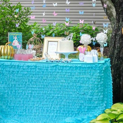 Butterfly Cinderella Party Ideas