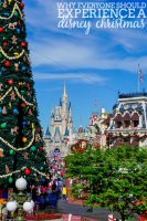 Why Everyone Should Experience Disney World at Christmas Time!