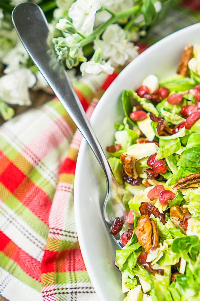 Cranberry Apple Brussel Sprout Salad - Christmas Salad Recipe