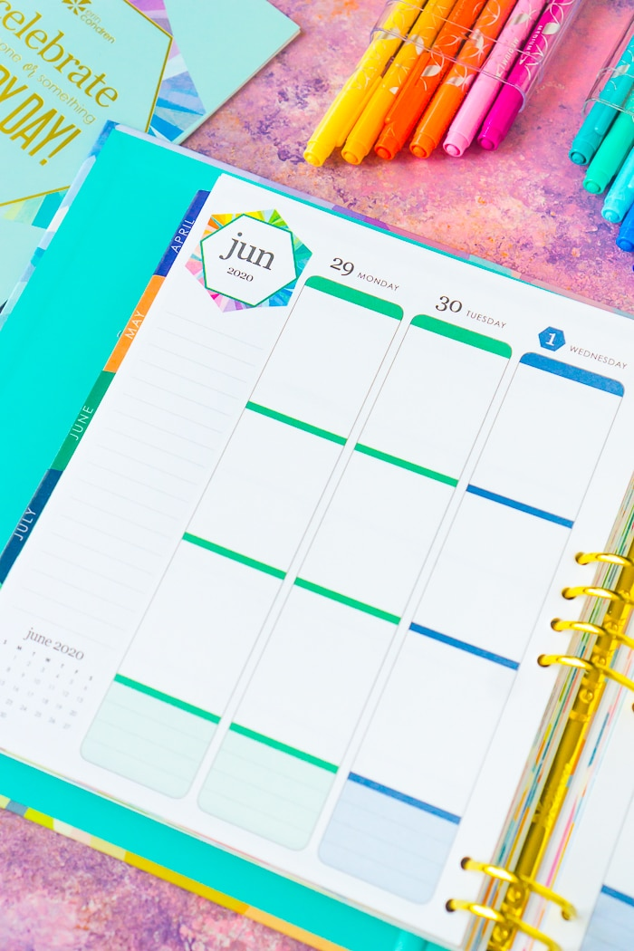 Erin Condren Life Planner Binder Weekly Spread in the Vertical format with 3 vertical unlabeled boxes for each day of the week