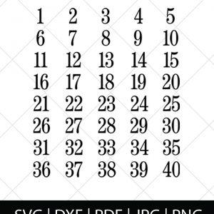 Pregnancy Countdown Shirt SVG