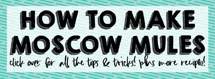 CLICK OVER TO OUR POST ON HOW TO MAKE A MOSCOW MULE FOR ALL THE TIPS, TRICKS, AND MOSCOW MULE RECIPES YOU COULD EVER NEED!